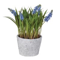 FAUX BLUEBELL IN POT